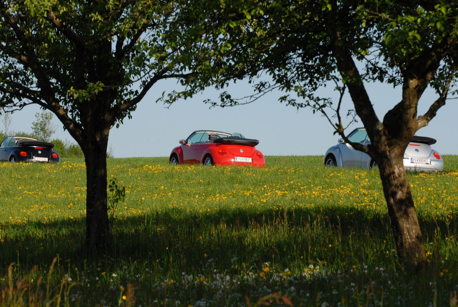 2011_SpringDrive_12